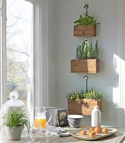 jardin_cocina2