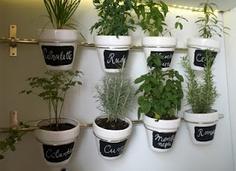 jardin_cocina3